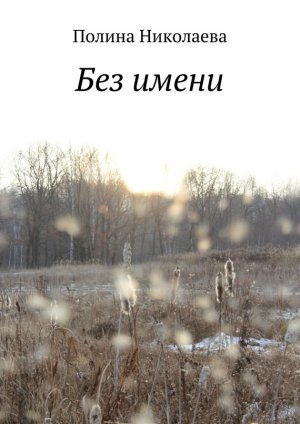 Полина Николаева. Без имени
